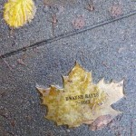Dwayne Hayes Leaf of Remembrance