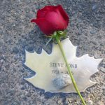 Steve Pond's Leaf with stone