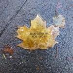 Julio Delgado Leaf of Remembrance