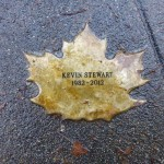 Kevin Stewart Leaf of Remembrance