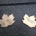 Photo of Leaves for Bear and Michael side by side