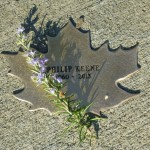 Phil Keene's Leaf, with a sprig of rosemary