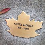 Photo of Joshua's Leaf