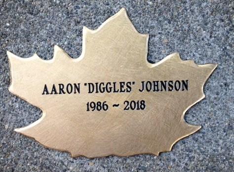 Aaron Johnson's Leaf
