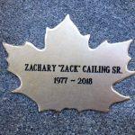 Zack's Leaf